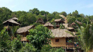 Natural Bungalows