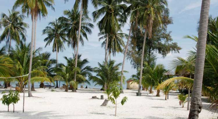 Palm-Beach-sur-Koh-Rong-Île-au-Cambodge